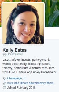 Kelly Estes